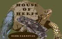 House of Herps Blog Carnival