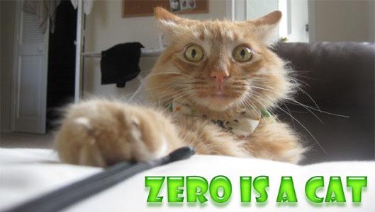 Zero Is A Cat