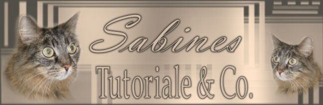 Sabines Tutoriale & Co