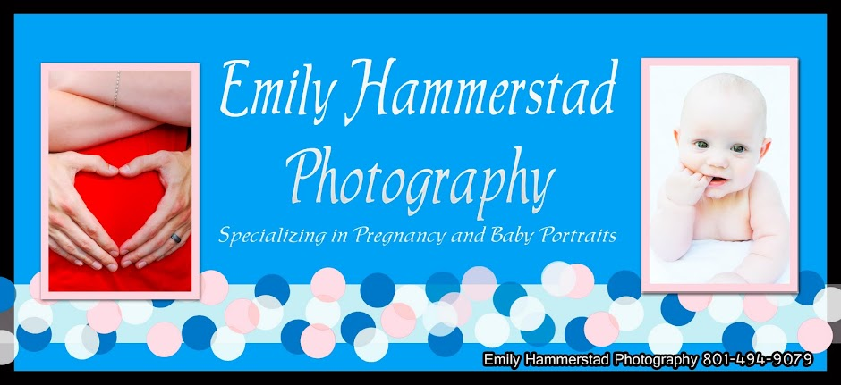 Emily Hammerstad Photography