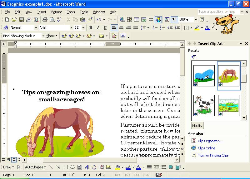 Microsoft Clip Art Reference