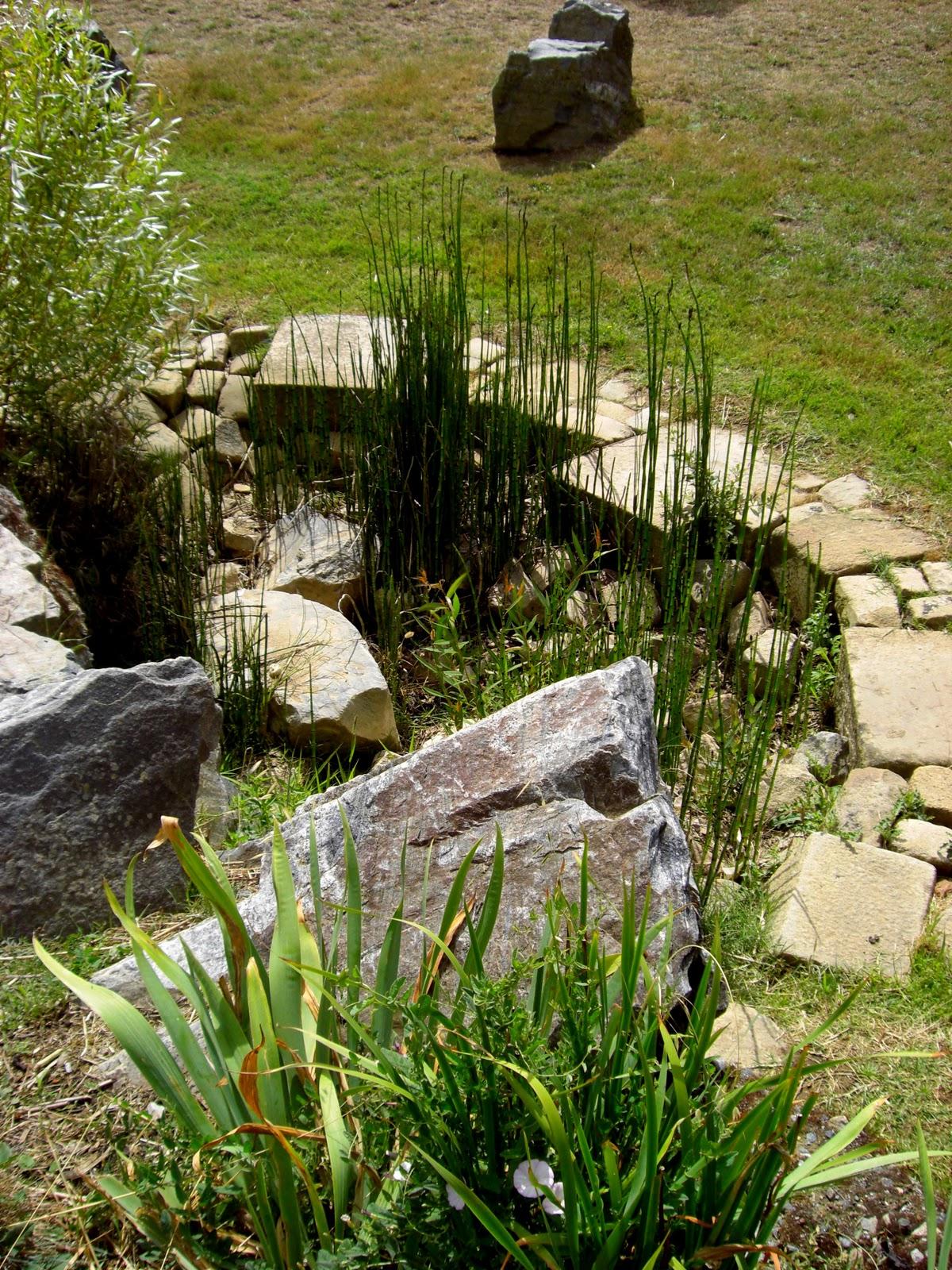 Paradis express le jardin toil paimboeuf for Jardin etoile paimboeuf