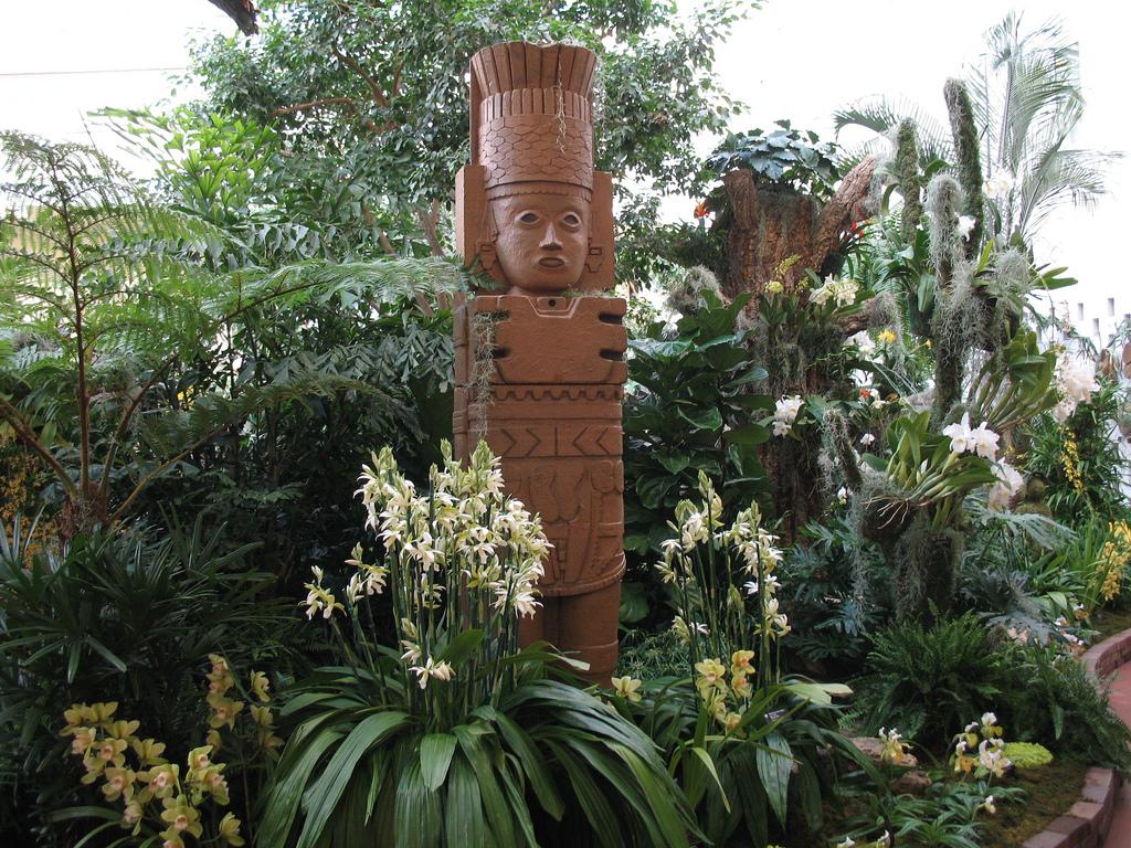 Paradis express missouri botanical garden orchid show 2011 - Orchid show missouri botanical garden ...