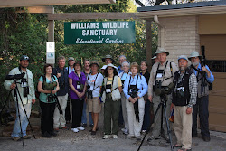 11.11.10 Birders from the Harlingen Birding Festival come to bird watch!