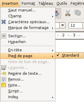 pied de page openoffice pagination document rapport projet