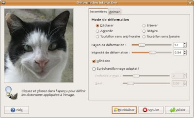 application deformation visage sourire chat smiley