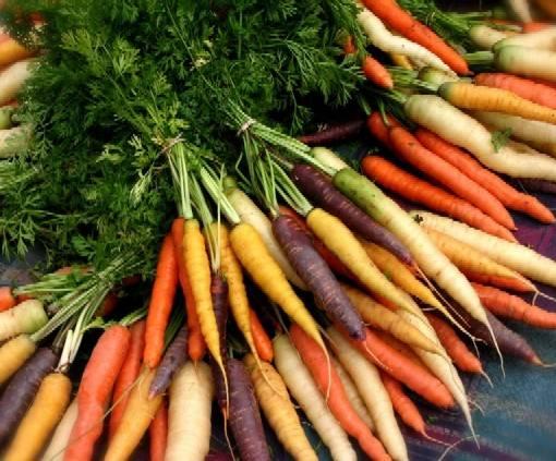 [carrots]