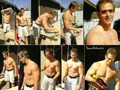 Scott McGillivray Shirtless http://zennmenn.blogspot.com/2009/05/diy-takes-on-whole-new-meaning.html