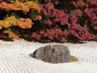 石と白砂と紅葉