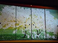 東大寺本坊の桜