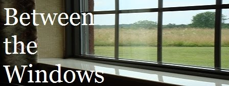 Between the Windows