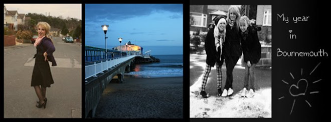 My year in Bournemouth