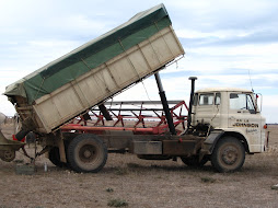 Ford D1314 Tipper