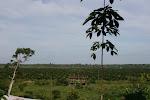 """Pemandangan Kampung Laboi. Kampung ini hanya """"terdedah"""" kepada dunia luar setiap 25 tahun sekali."""