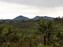 Twin Peaks of the Congo.