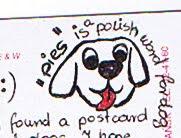 Pies = Cão (em Polaco)
