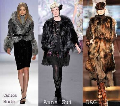 Top Trends Winter 2009-2010