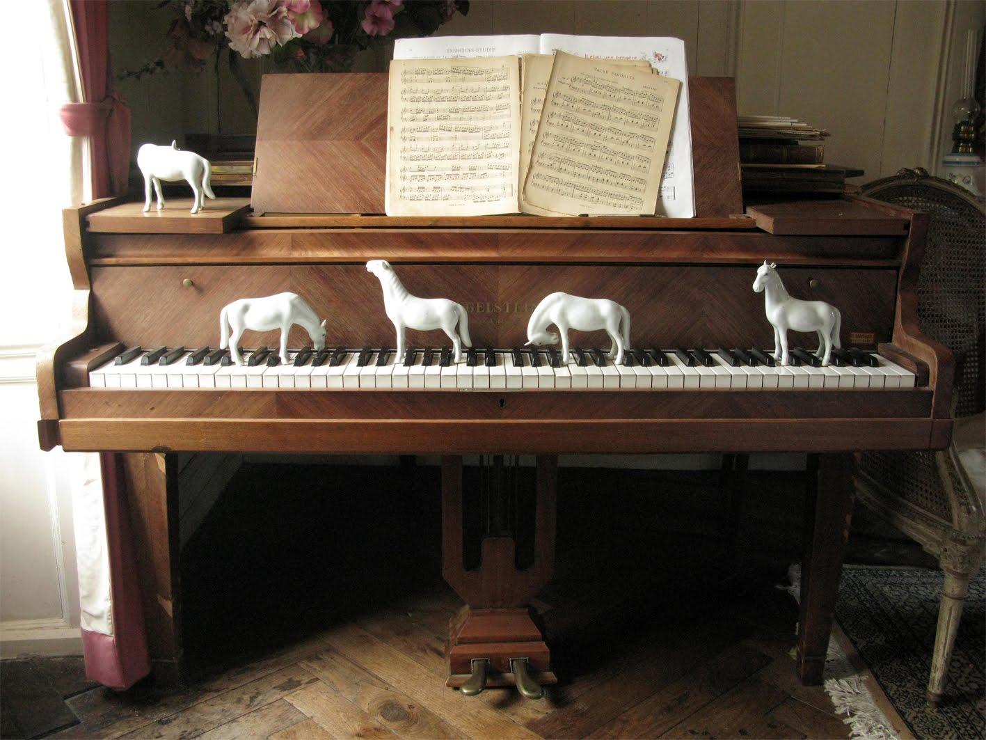 [chevaux_piano_web.jpg]