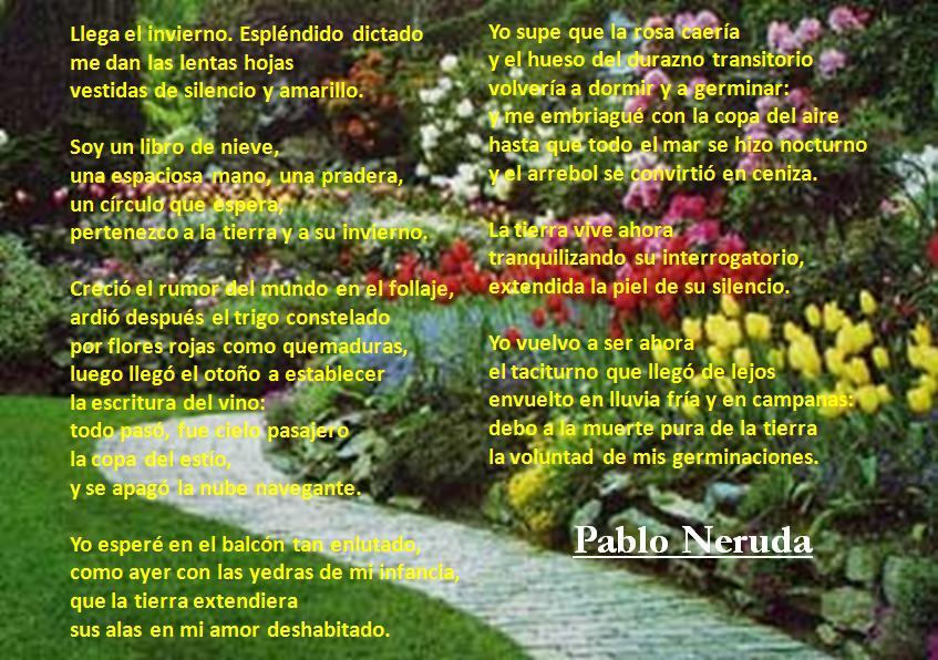 Jardin antioquia for Crea tu jardin