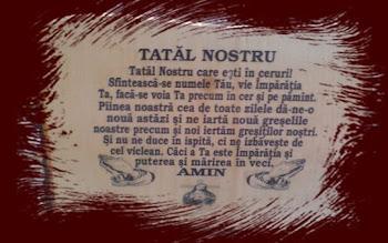 TATAL NOSTRU