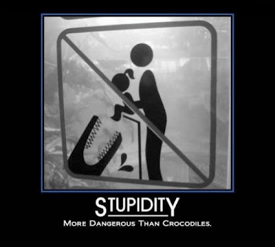 [Image: stupidity.jpg]
