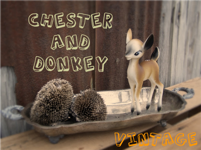 chester and donkey