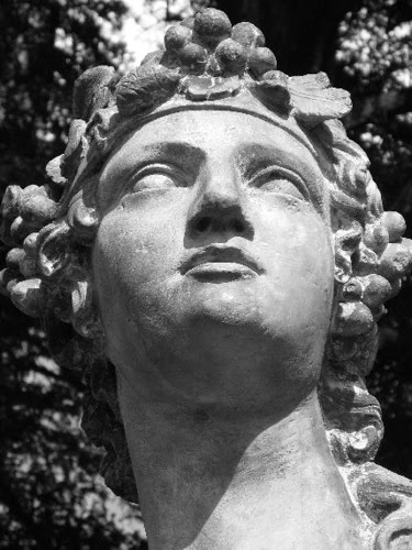 contrasting apollo dionysus essay example 2018-8-23 in greek mythology the judgement of paris was a contest between the three most beautiful goddesses of olympus--aphrodite, hera and athena--for the prize of a golden apple addressed to the fairest.