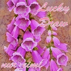 nur_eimi Lucky draw...