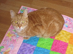 Kitties and Quilts