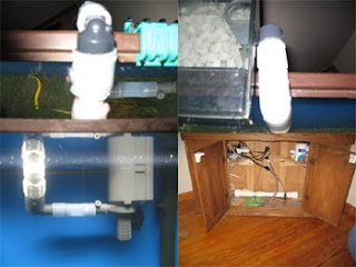 UV Sterilizer Aquarium Set Up