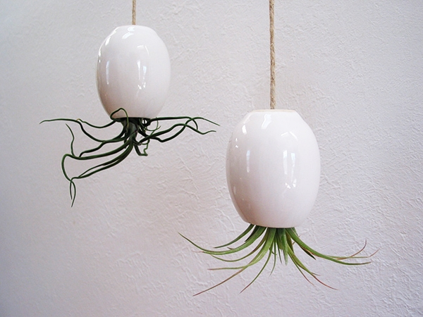 Mud Puppy - Hanging Air Plant Pod