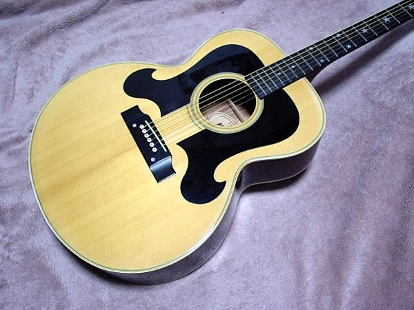 Aria Gl as well Elite Hb furthermore Morris Wj besides Morris Tornado Xx moreover Jumbo J. on bill lawrence acoustic guitar pick up