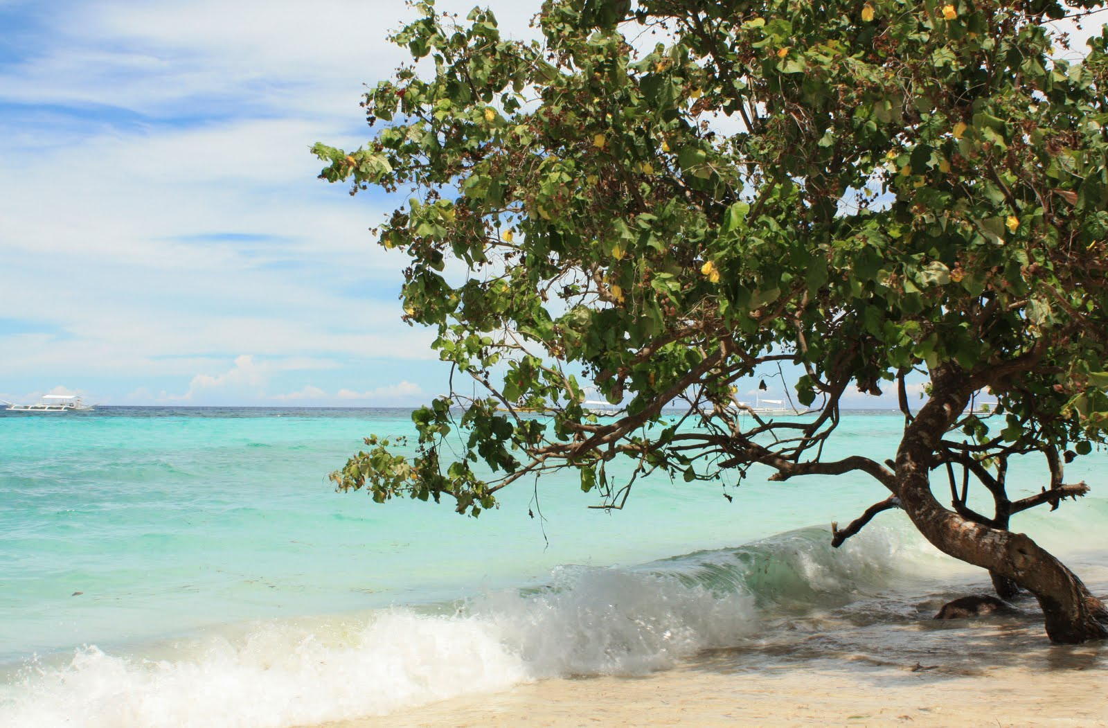 Dumaluan Beach Resort Map%0A Part   CebuBohol Trip  Day     Panglao u    s Dumaluan Beach  u     Bohol Beach  Resorts
