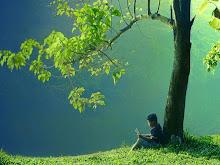 Cualquier sitio es bueno para leer