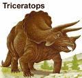 Трицератопс Triceratops!!!