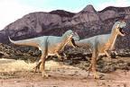 Maiasaurus!!!