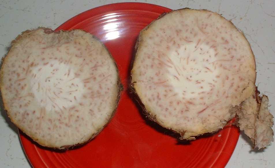 how to cook malanga root