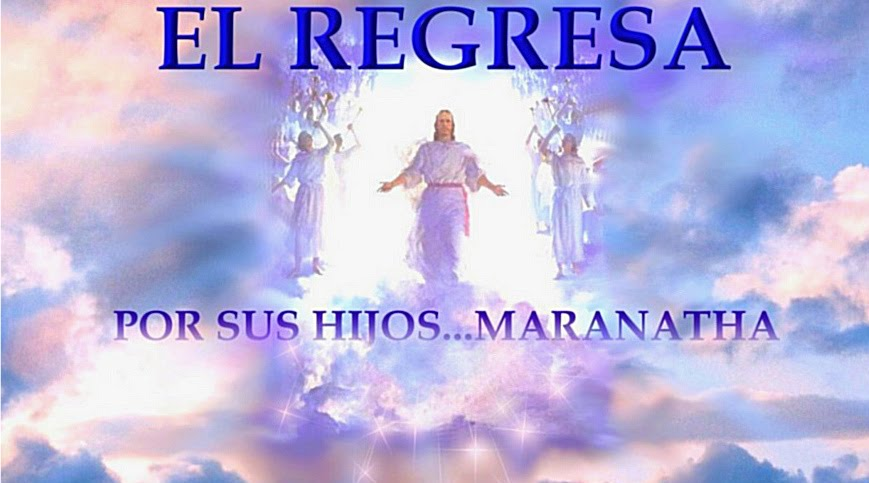 EL REGRESA