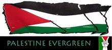 i.love.PALESTINE