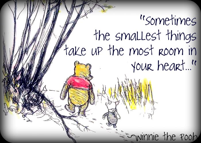 Pooh Wisdom   Quotes From Winnie The Pooh About Life