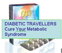 Heal Out Your Metabolic Syndrome