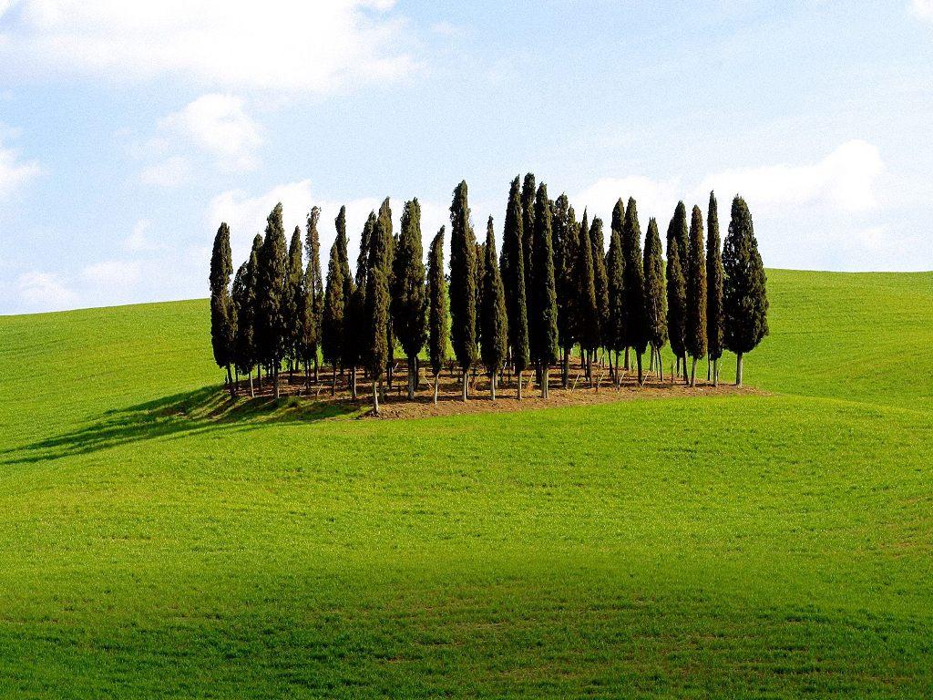 http://1.bp.blogspot.com/_pzFZkIHNfBI/S-JZd_UdWqI/AAAAAAAAAvQ/F7_iYE3zLCU/s1600/Scenic+Siena+Province,+Tuscany,+Italy.jpg