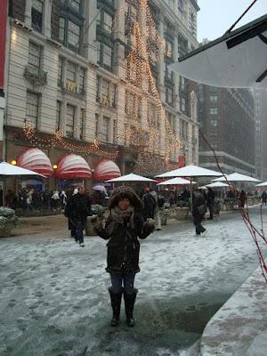 (NY) Blizzard