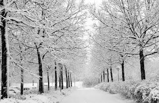 zima śnieg