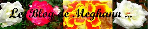Le Blog de Méghan [...]