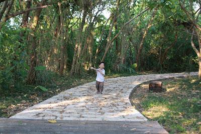 親子的關渡自然公園,西南賞鳥廣場