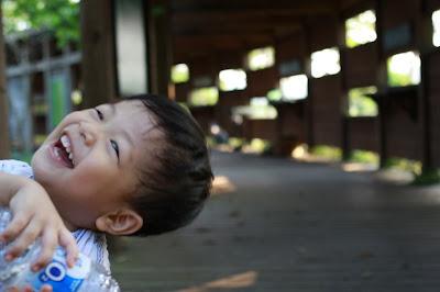 親子的關渡自然公園,西南賞鳥廣場賞鳥牆