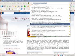 image de l'historique de la barre d'adresses sous Firefox 3