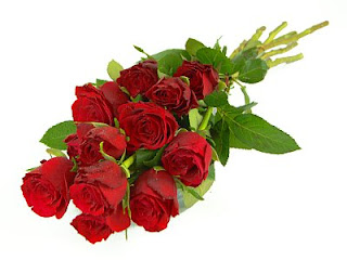 gambar mawar merah romantis