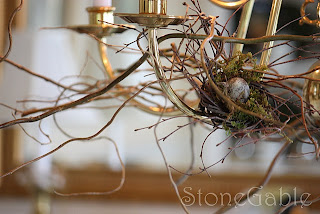 OUTBACK ANTLER CHANDELIERS - Home